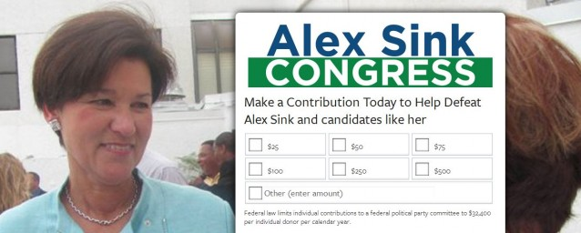 alex-sink-democrat