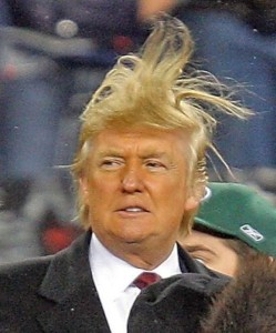trumps great hair pic